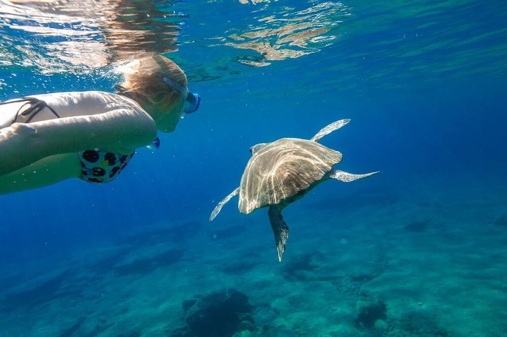 Limeni Sea turtle Mietwagenrundreise Peloponnes