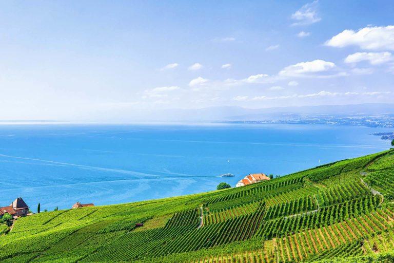 Lavaux Malerische Schweiz Autorundreise