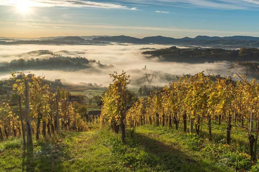 Das grüne Slowenien